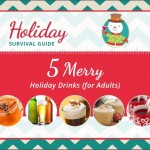 DIY Drink Recipes (for Adults) | Holiday Survival Guide
